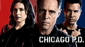 Chicago P.D. Staffel 2 auf AXN
